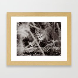 I See U ! Framed Art Print