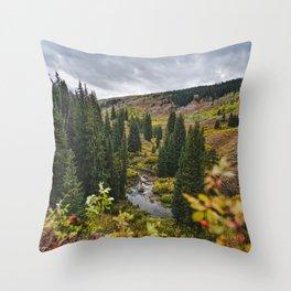 Wyoming Fall Throw Pillow