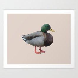 Poly Mallard Art Print