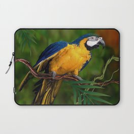 BLUE-GOLD MACAW PARROT IN JUNGLE Laptop Sleeve