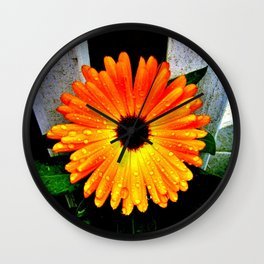 Orange Garden Marigold in the Evening Wall Clock