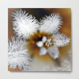 Droste Flower Metal Print