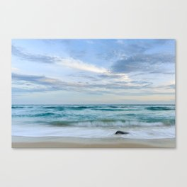 Observe and Absorb Canvas Print