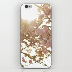 Peeking Through iPhone & iPod Skin