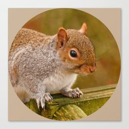 Woodland-Photos  Logo Canvas Print