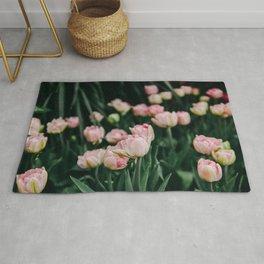 Blush Tulips By The Dozen Rug