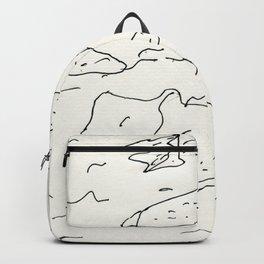 lake rocks Backpack