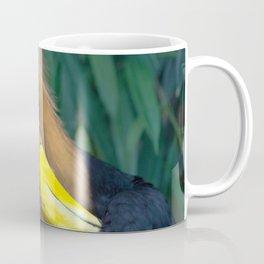 Wildlife Collection: Colourful Bird Coffee Mug