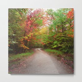 Autumn Road Metal Print