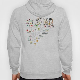 Evolution in biology, scheme evolution of animals on white. children's education back to scool Hoody