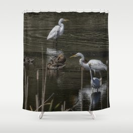 Three Great Egrets Among the Ducks, No. 2 Shower Curtain