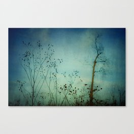 Moody Blues Canvas Print