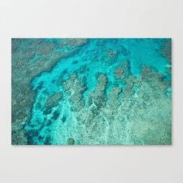 Tropical Coral Reef landscape full of vibrant blue and turquoise colour, Japan Canvas Print