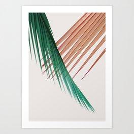 Palm Leaves, Tropical Plant Art Print