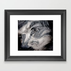 Cat vs human black / white Framed Art Print