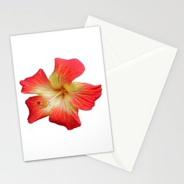 Gorgeous Red And Gold Hawaiian Hibiscus Flower No Text Stationery Cards