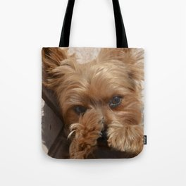 Put Em' Up - The Yorkie Dog Tote Bag