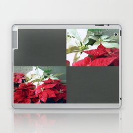 Mixed color Poinsettias 3 Blank Q6F0 Laptop & iPad Skin
