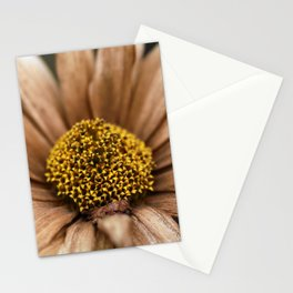 Death of a Sunflower Stationery Cards