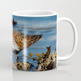 Bird on the Beach / A Solitary Dunlin Coffee Mug