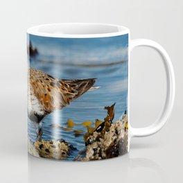 Bird on the Beach / A Solitary Dunlin Coffee Mug