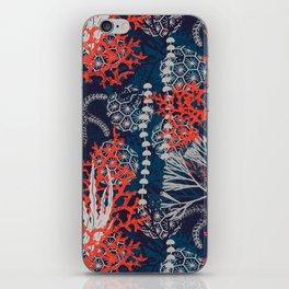 Corals and Starfish iPhone Skin