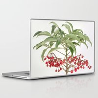 spice Laptop & iPad Skins featuring Spice Berry  by taiche
