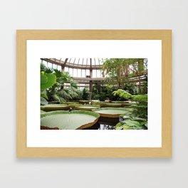 2009 - Winter Garden Framed Art Print