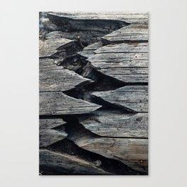 Broken but Beautiful Canvas Print