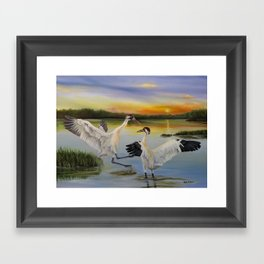 Sunrise Whooping Cranes Framed Art Print
