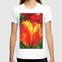 Curly Tulip Red And Yellow T-shirt