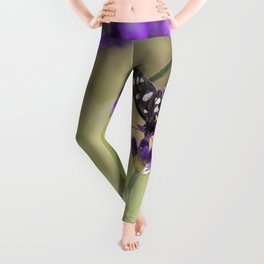 Amata Phagea on lavender Leggings