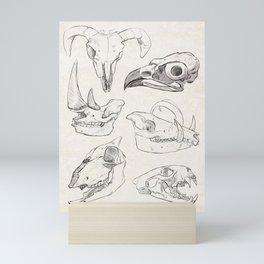 Animal Skulls Mini Art Print