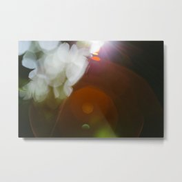 Finding the Light II Abstract Photography Metal Print