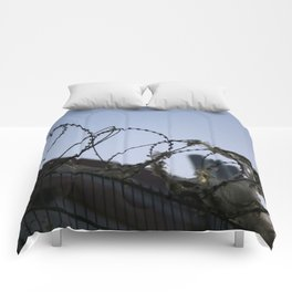 Barbed Wire Sky Comforters