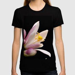 Lemon Buds T-shirt