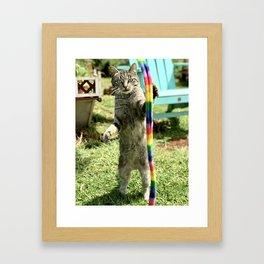 Rave Kitty (Lanai Cat Sanctuary) Framed Art Print