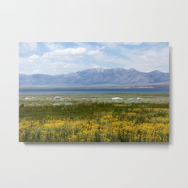 From Flowers to Mountains (Mono Lake, California) Metal Print