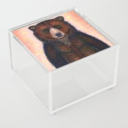 Blissed Out Bear Acrylic Box
