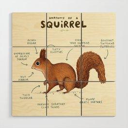 Anatomy of a Squirrel Wood Wall Art