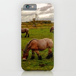 Four horses grazing the meadow iPhone Case