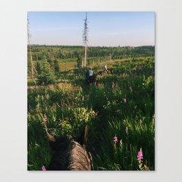 Horseback in Alaska Canvas Print