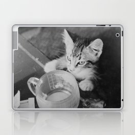 Our kitty on Quebec St. Laptop & iPad Skin