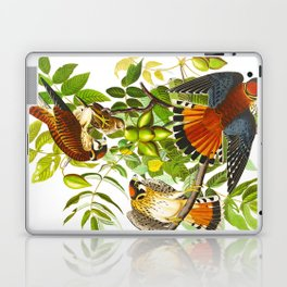 Sparrow Vintage Scientific Bird & Botanical Illustration Laptop & iPad Skin