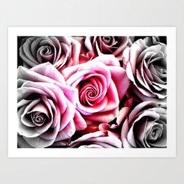 Bright Pink Roses : Pop of Color Art Print