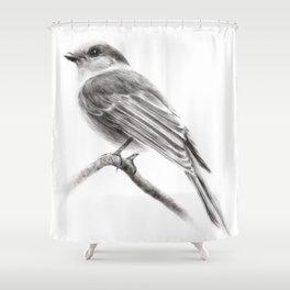 Grey Jay Shower Curtain