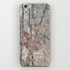 Swaying Grasses iPhone & iPod Skin