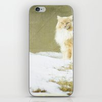 hermione iPhone & iPod Skins featuring Hermione by Kristybee