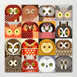 North American Owls Canvas Print