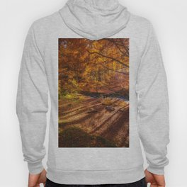 The Golden Autumn Campground (Color) Hoody